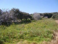 Field for sale - Kampos Kefalos