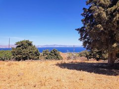 Field for sale - Paradisi Kos